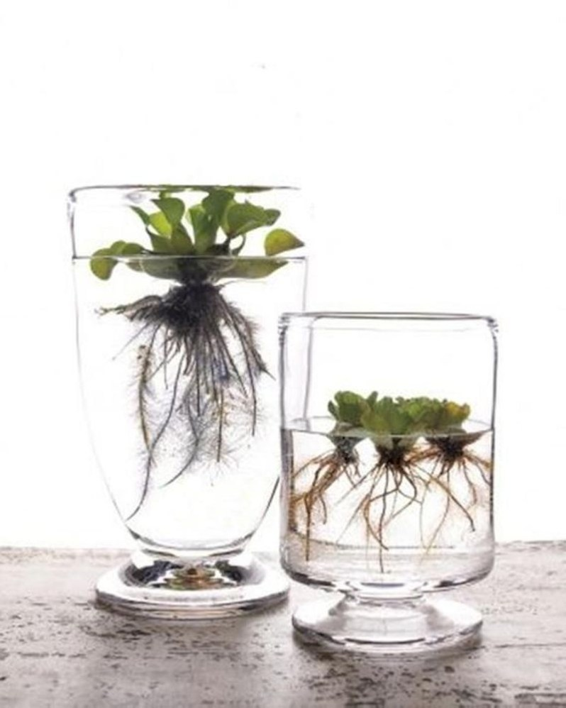 Indoor water garden ideas that fresh your room 32
