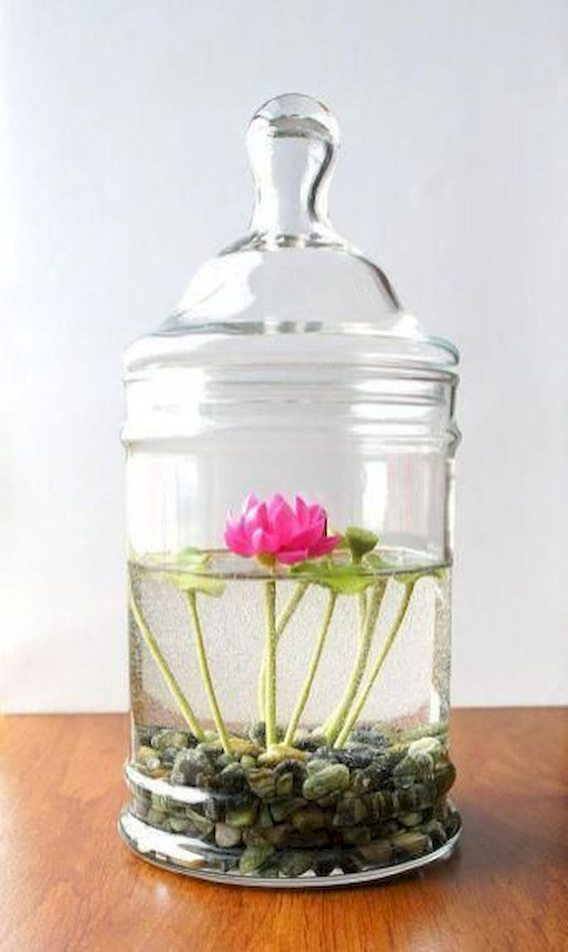 Indoor water garden ideas that fresh your room 48