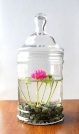Indoor water garden ideas that fresh your room 48