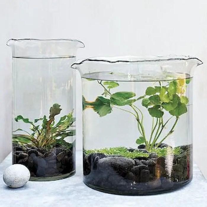 Indoor water garden ideas that fresh your room 52