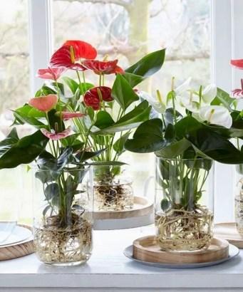 Indoor water garden ideas that fresh your room 54