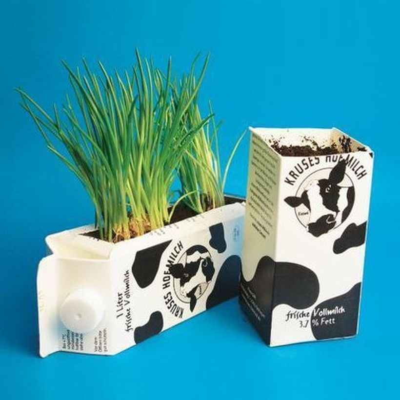Diy tetra pack vases idea with horizontal position and vertical position for your garden