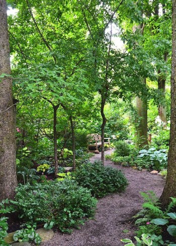On budget garden walk path ideas for an easy movement around the garden 35