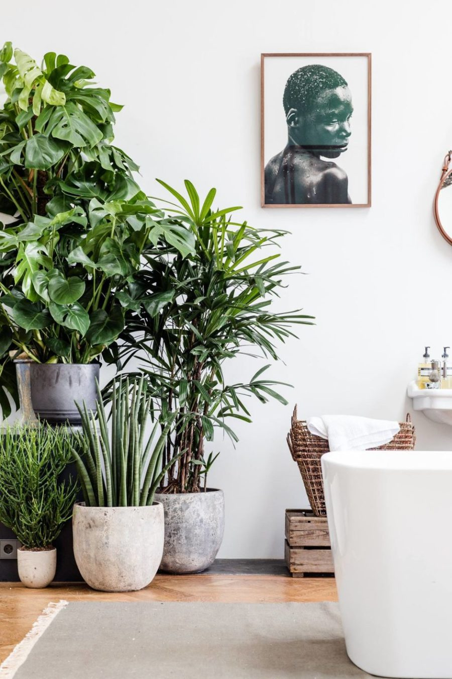 Stunning interior greenery ideas with palm decoration to add warm in your bathroom