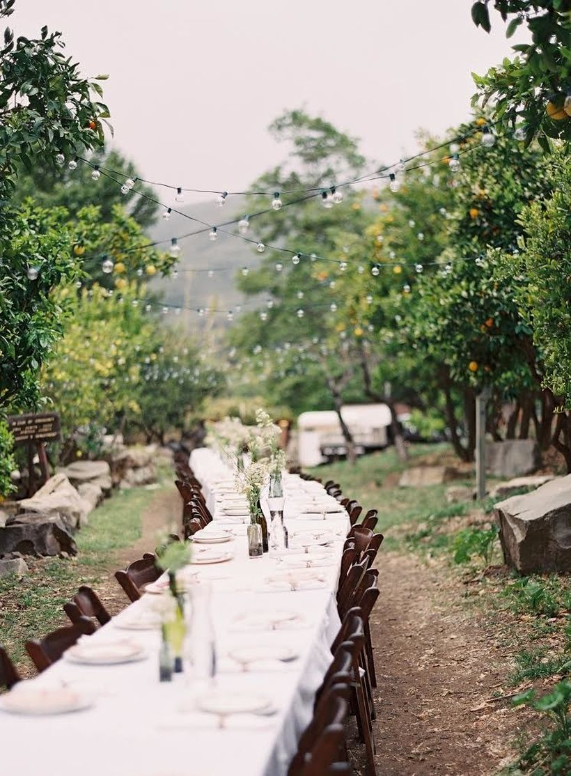 A comfortable outdoor table set for wedding with a crisp winding table decorated with arrangements of baby's breath and vintage dinnerware, lined dark, fold-back wooden chairs.