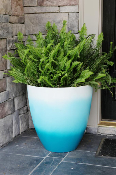 Beautiful turquoise ombre pot for garden with plants to create an elegant garden