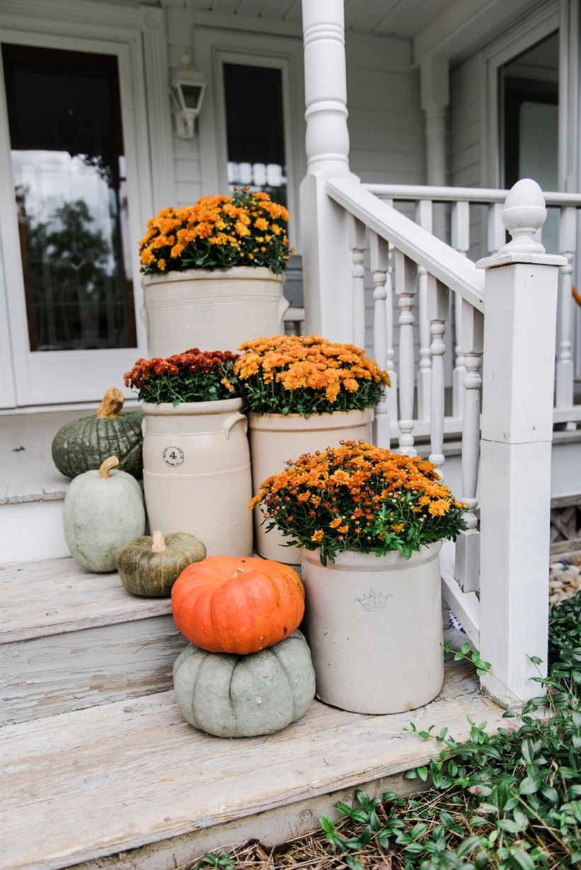 Simple white scheme fall porch ideas for rustic vibe ornament with pumpkin fruit and colorful flower on the stairs