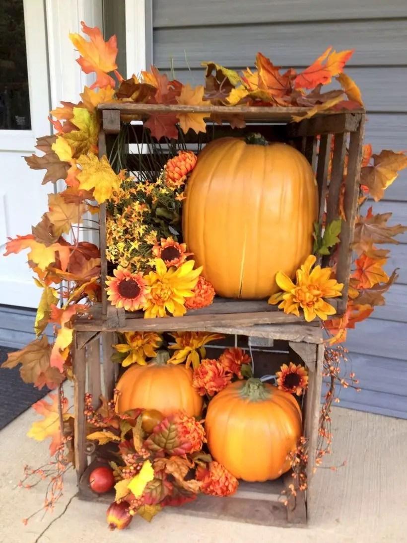 Big pumpkins and wooden box