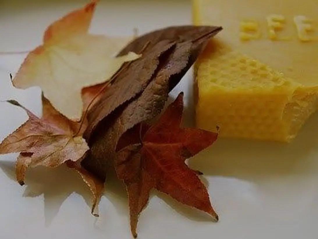 Interesting autumn leaves craft ideas