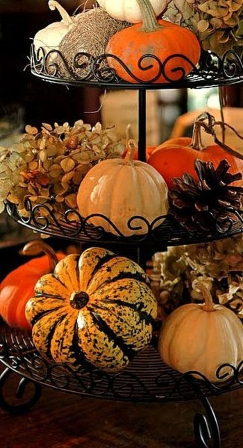 Unusual pumpkins for centerpiece decoration