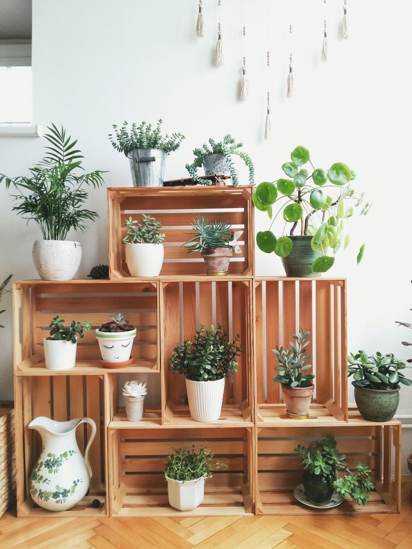 Best wooden pallet rack placement succulent with square shape for beautiful decoration
