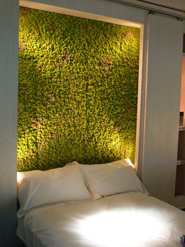 Modern bedroom design with perfect lighting and moss on the wall to perfect your bedroom design