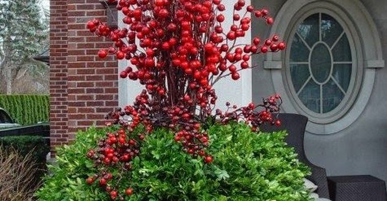 Plants decoration combined with red flowers