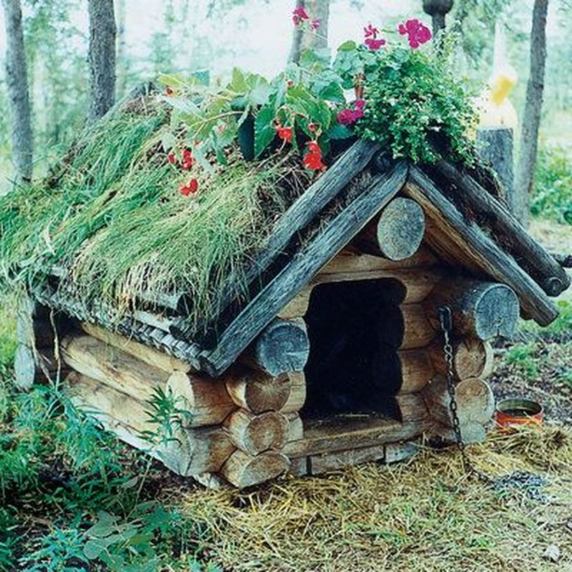 Farmhouse dog house from a tree cut