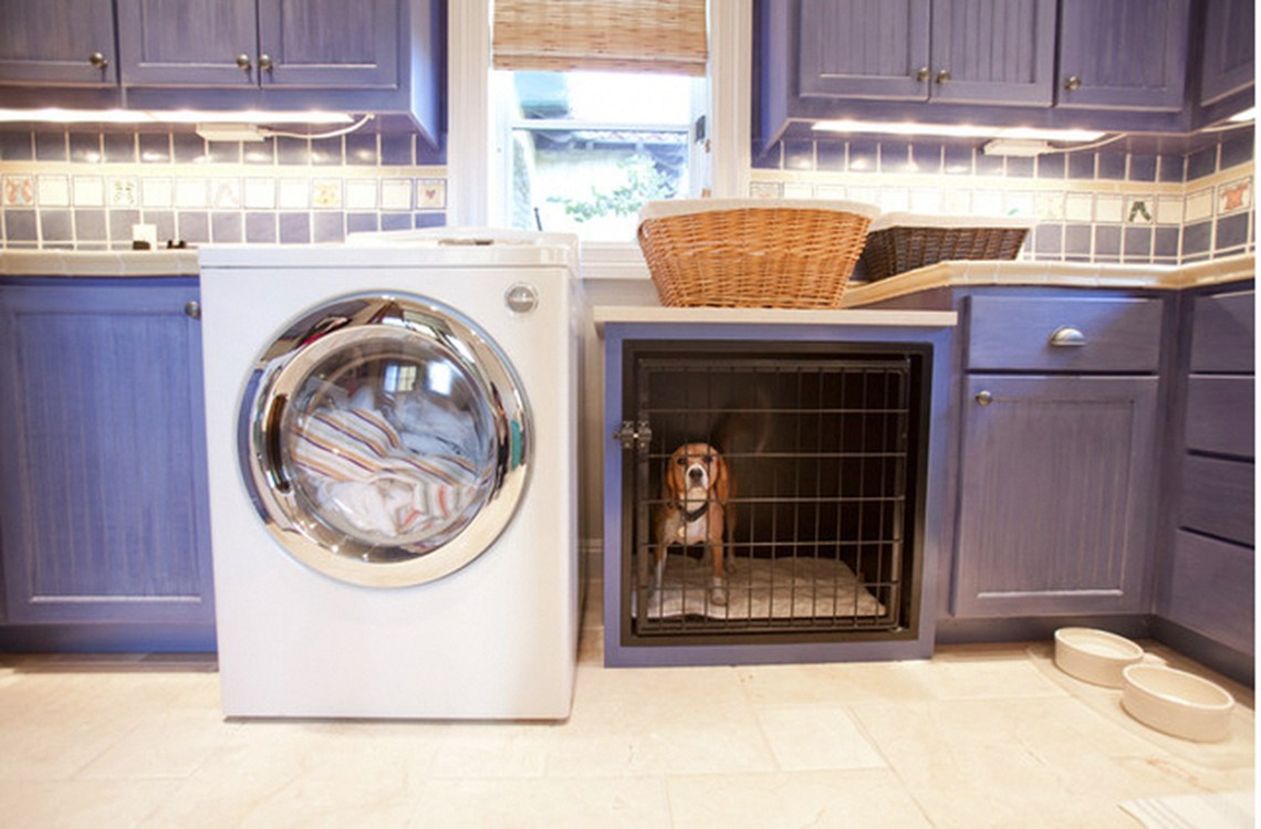 Iron dog house in laundry room