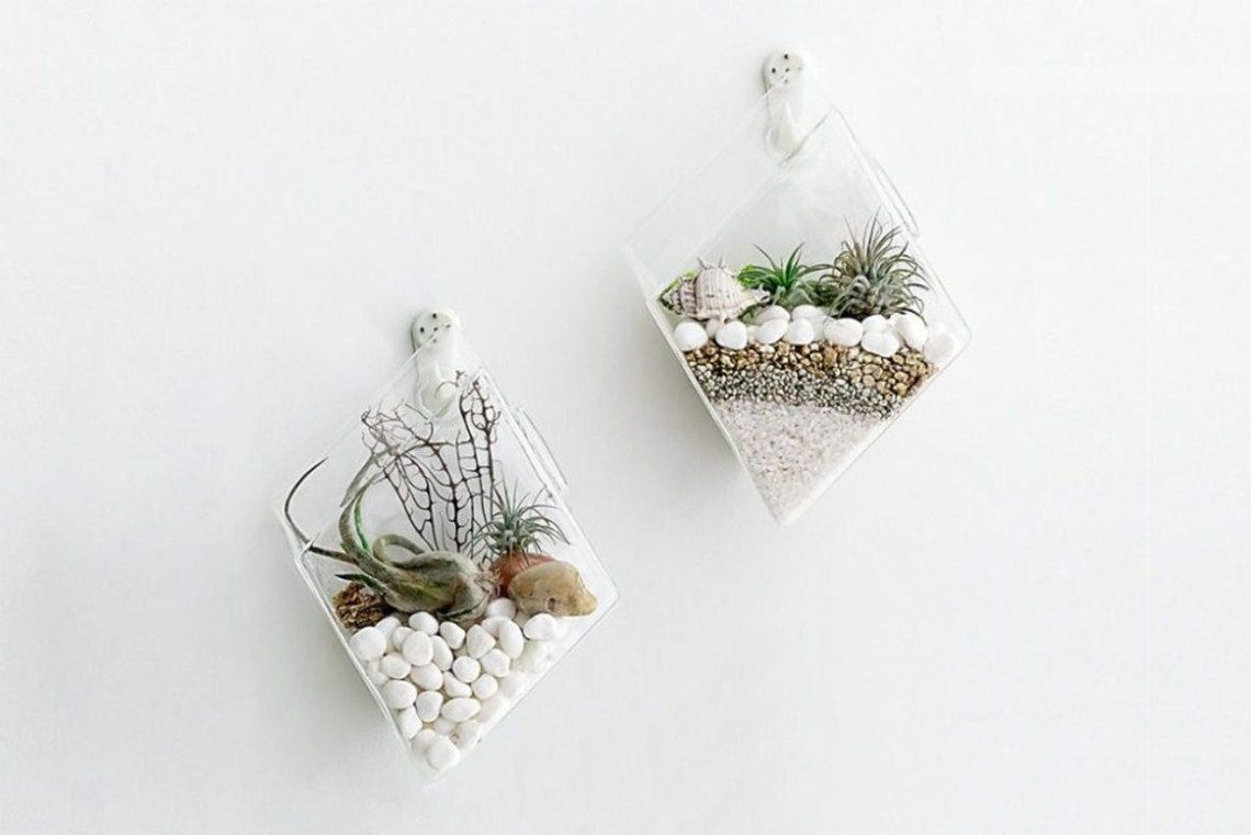 Modern glass terrarium can be used for wall decoration and make the room comfortable you must try