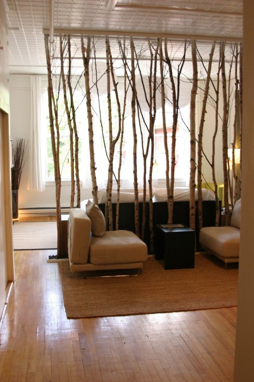 Room divider from eucalyptus tree