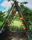 Rustic twigs treillis