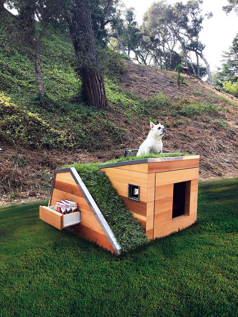 Simple dog house in backyard