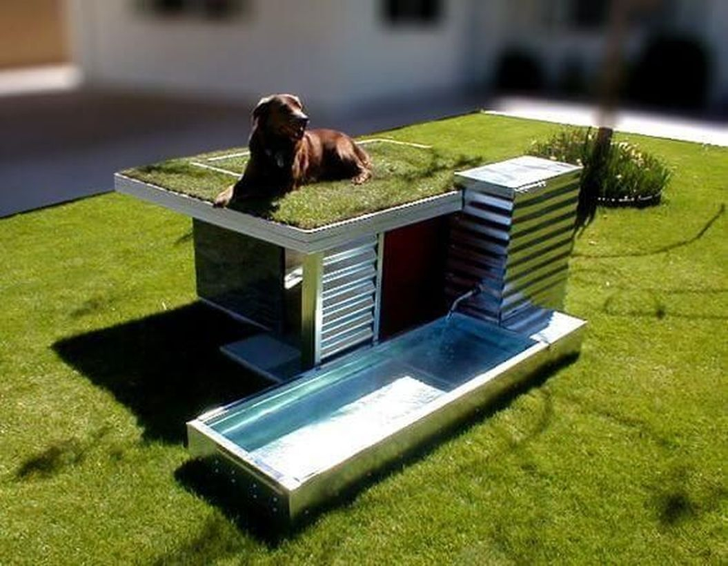 Small dog house and playground