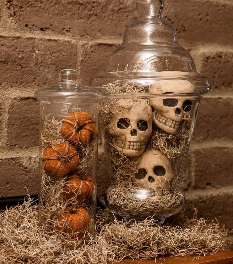 An awesome home decoration with the skull in the jar is combined with the roots to perfect your halloween decorations