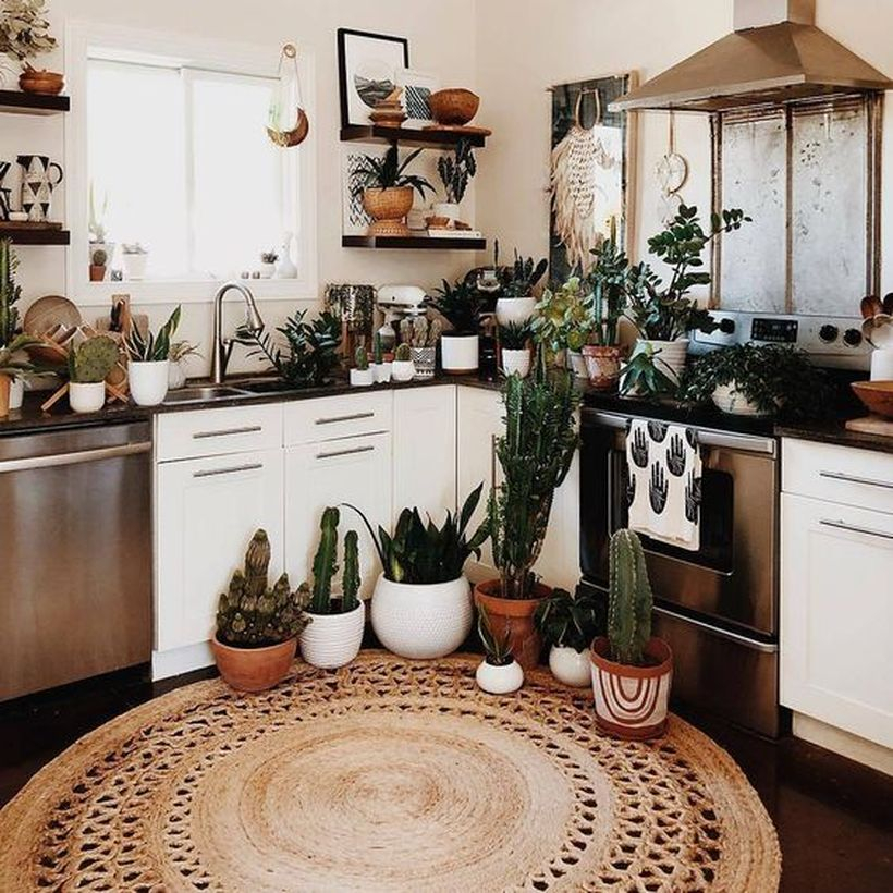Round brown pattern flooring kitchen with white cabinet, wooden rack and plants