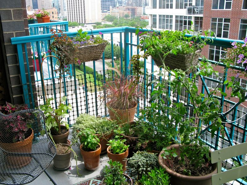 A-beautiful-balcony-garden-with-herbs-and-a-place-that-uses-rattan-knitted-and-vertical-rattan-on-your-balcony-railing.