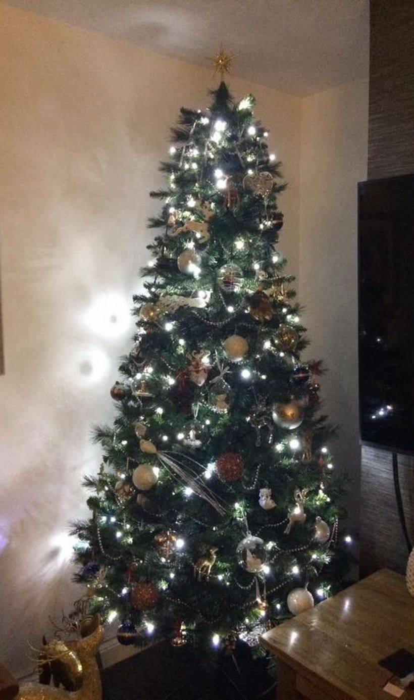 Green chrsimast tree with white light