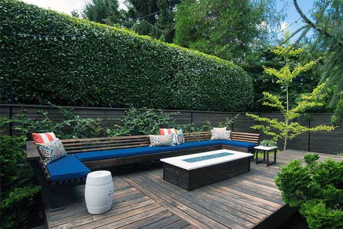 Do-you-know-the-top-5-shrubs-for-hedges