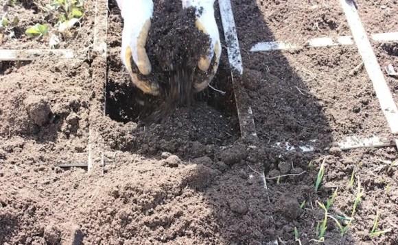 1-a-garden-soil-recipe-1