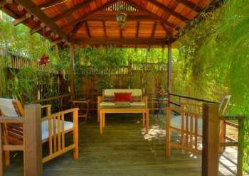 Privacy_bamboo