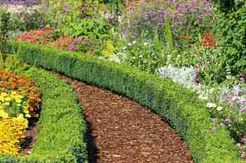 Beautiful-garden-walkway-with-hedge-apr4