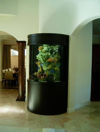 Home-improvement-delightful-fish-tank-designer-game-aquariums-types