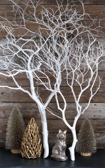 29.-manzanita-branch