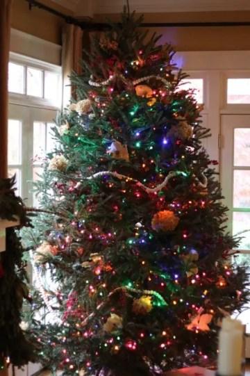4 liza-christmas-tree-2015-533x800