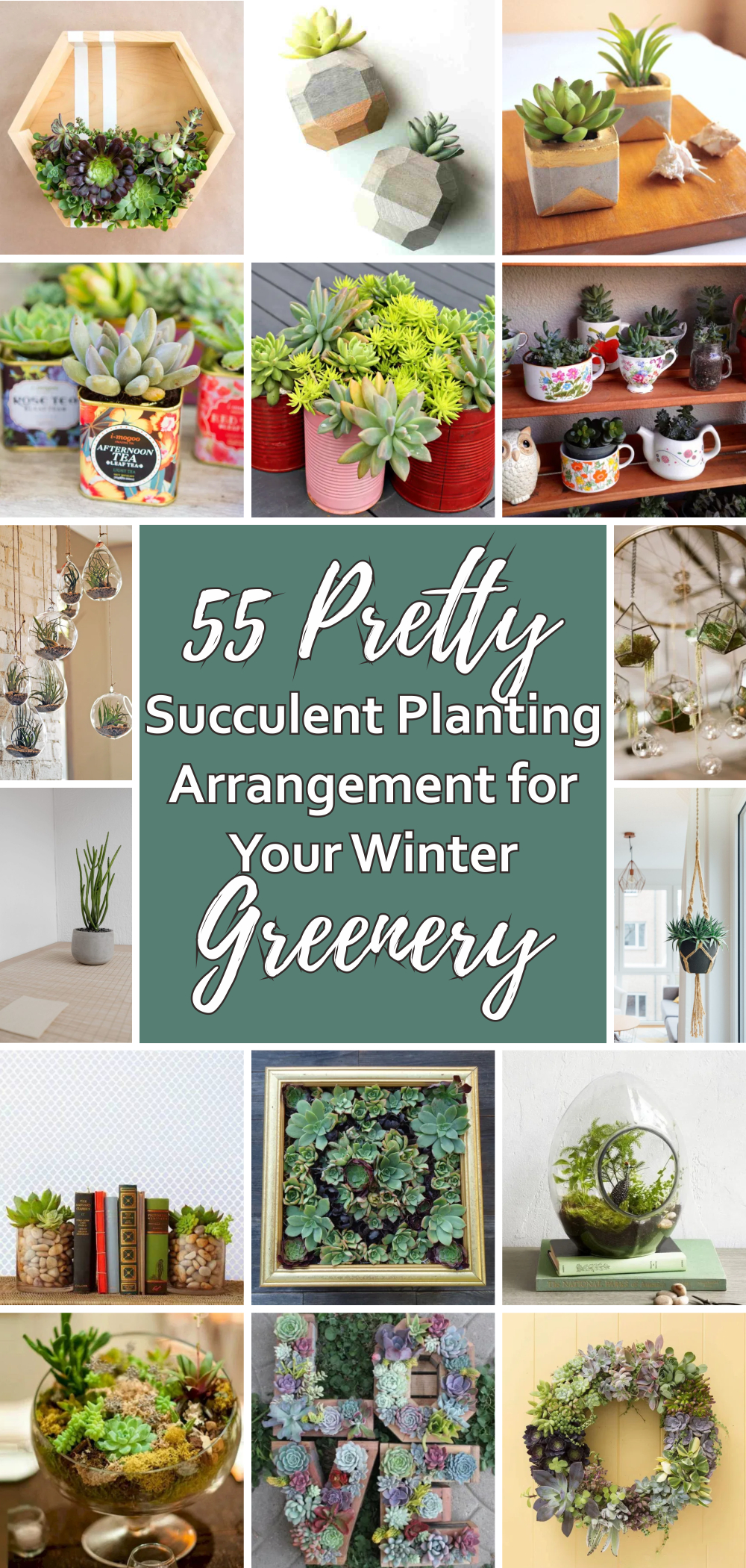 55 pretty succulent planting arrangement for your winter greenery 1