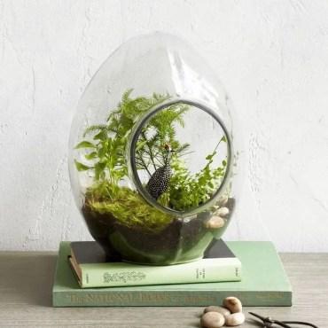 Creative-diy-succulent-ideas-for-your-garden-02