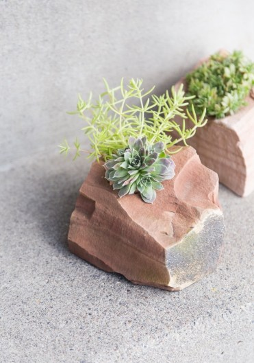 This-succulent-rock-garden-is-simply-stunning