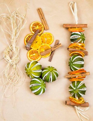 Dried-citrus-fruit-600x777