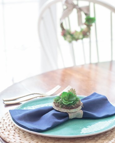 Succulents+display+for+a+center+piece+or+table