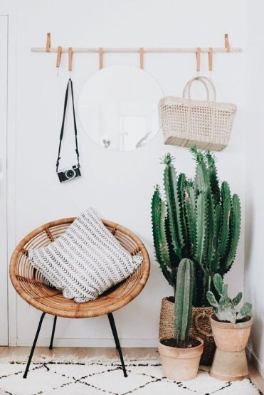 11-a-wood-and-leather-rack-a-woven-chair-cacti-and-succulents-in-terracotta-pots