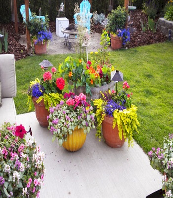 Mix plant gardens Turn Your Small Space Into A Large Garden Area With These Genius Space-Savvy Solutions
