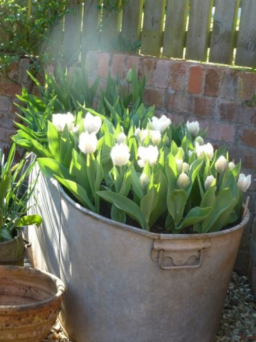 How-to-incorporate-tulips-into-your-spring-decor-ideas-29-554x738