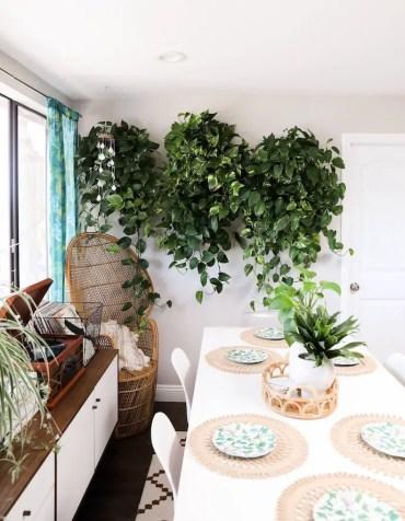 Indoor-garden-3-1