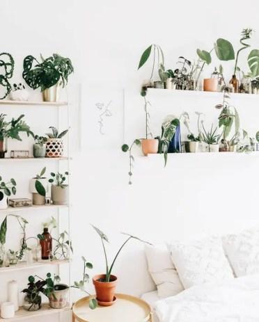 Minimalist-indoor-garden-design-for-bedrooms