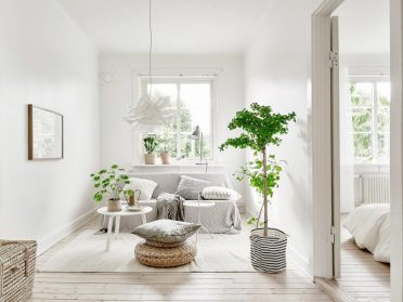 1-scandinavian-decor-plants1-768x577-1