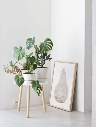 1-scandinavian-decor-plants7-765x1024-1