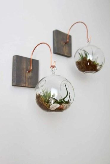 Home-decor-ideas-with-plants-14