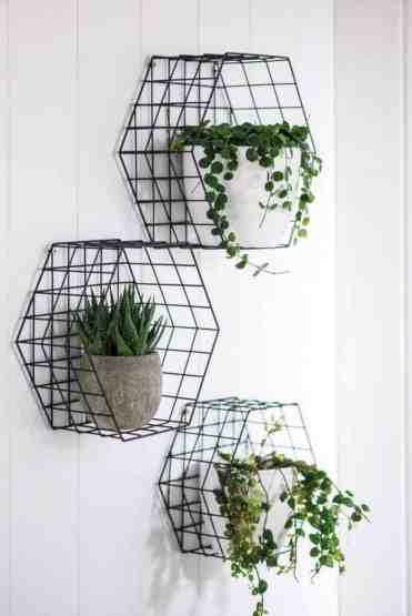 Home-decor-ideas-with-plants-6
