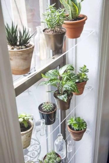 Home-decor-ideas-with-plants-9
